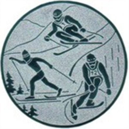 Embleme Ski-Kombination