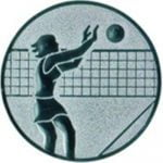 Emblem Volleyball Damen