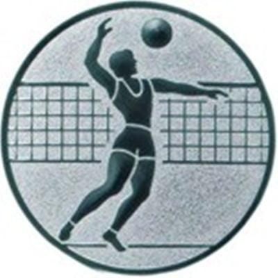 Emblem Volleyball (Herren)