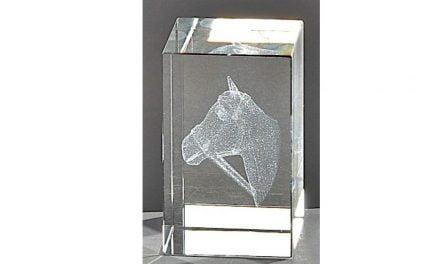 Kristallquader Pferd 8cm x 5cm