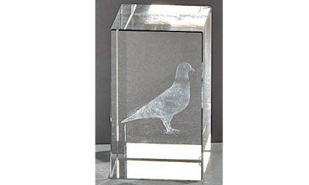 Kristallquader Taube 8cm x 5cm