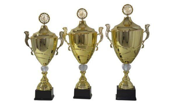 Henkelpokalserie Oldenburg gold mit Henkel