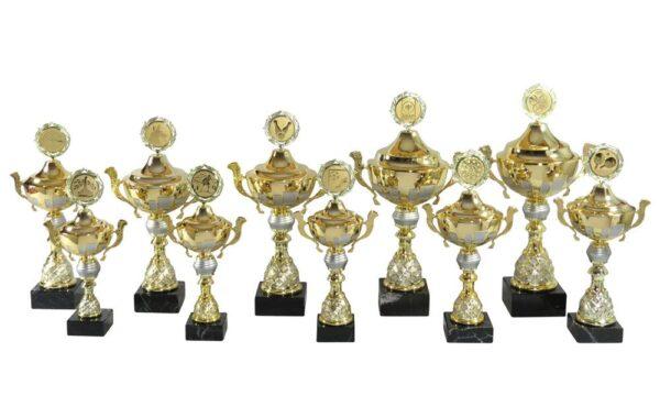 Henkelpokale Ried gold-silber 32cm-46cm - Henkelpokale Kreisern / Ried - Ihr Spezialist für Sportpreise