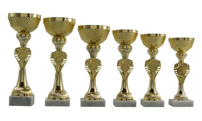 Ihr Spezialist für Pokale