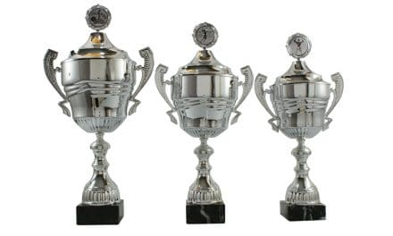 Pokale Steiermark kaufen