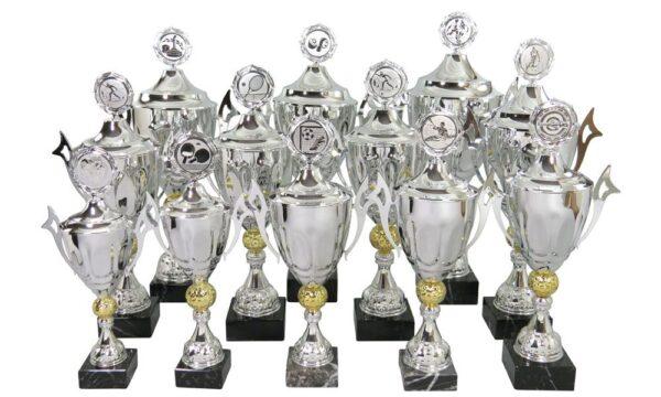 Pokale Landshut online kaufen